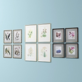 Set of pictures of flowers and frames