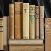 Set of old books