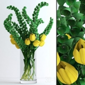 Yellow tulips and Moluccella