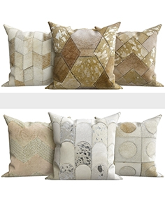 Decorative pillows from Wayfair shop2