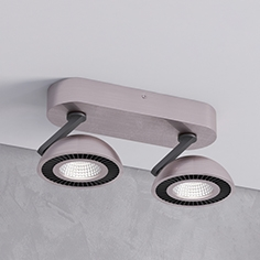 Ceiling light Odeon light  3535  2CL Karima