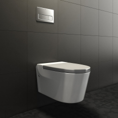 Roca Khroma toilet flushing and key In-Wall