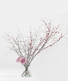 Prunus branches and chrysanthemums