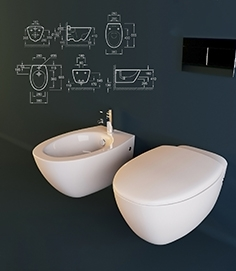 Toilet and bidet Jacob Delafon Presquile
