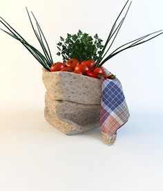Bag with vegetables and a napkin