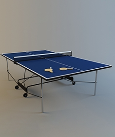 Marina projects tennis table