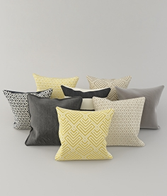 Collection of pillows 61