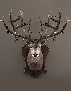 Decor of deer 01