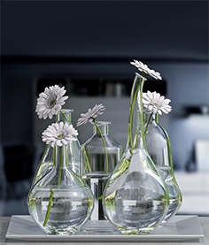 Decorative vases set 02