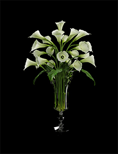Bouquet of calla in a vase 01